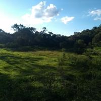 Venda De Sítio No Rural Barro Branco Em São Thomé Das Letras-MG