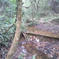 Venda De Sítio No Rural Batinga Em São Thomé Das Letras-MG