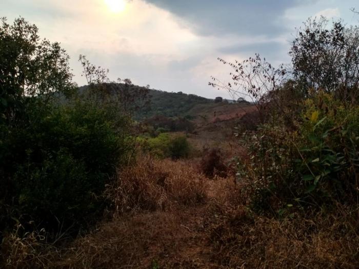 Sítio A Venda Em São Thomé Das Letras no Rural Crioulos