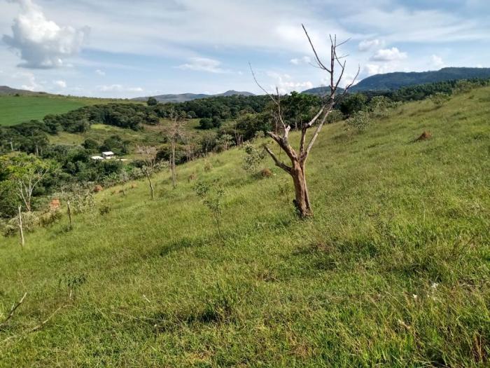 Sítio A Venda Em São Thomé Das Letras no Rural  Sobradinho de Minas
