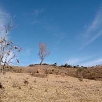 Terreno A Venda Em São Thomé Das Letras no Rural Lagoa